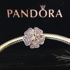 Original pandora charm engraved with ale s925